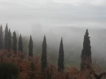 vertine, chianti, nebbia gennaio 2018 (4)