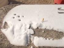 cicca di sigaretta dedica neve e maleducazione (3)