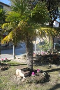 montalcino giardino di tita (18)