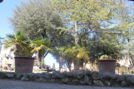montalcino giardino di tita (19)