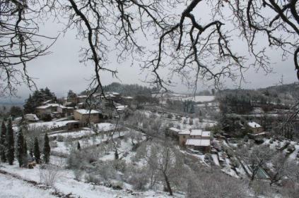 neve 3 febbraio montegrossi e badia a coltibuono, chianti (16)