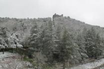 neve 3 febbraio montegrossi e badia a coltibuono, chianti (20)