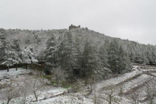 neve 3 febbraio montegrossi e badia a coltibuono, chianti (24)