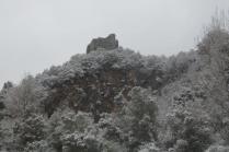 neve 3 febbraio montegrossi e badia a coltibuono, chianti (25)