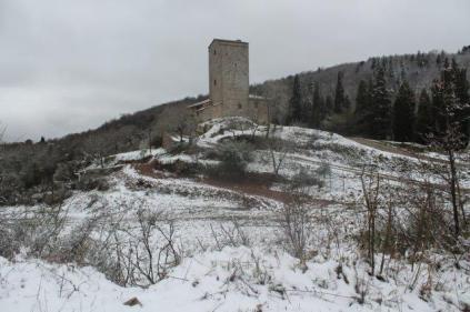 neve 3 febbraio montegrossi e badia a coltibuono, chianti (26)