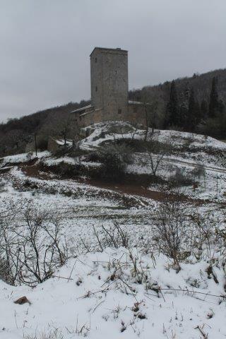 neve 3 febbraio montegrossi e badia a coltibuono, chianti (27)