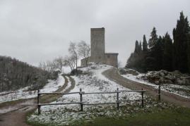 neve 3 febbraio montegrossi e badia a coltibuono, chianti (28)