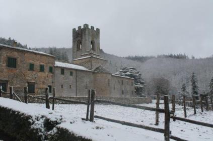 neve 3 febbraio montegrossi e badia a coltibuono, chianti (42)