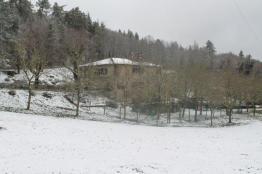 neve 3 febbraio montegrossi e badia a coltibuono, chianti (6)