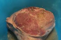 salatura del prosciutto (7)