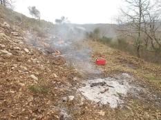 vertine il crepitare del fuoco con le ginestre (5)