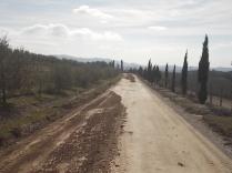 vertine manutenzione strade bianche (10)