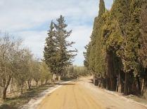 vertine manutenzione strade bianche (12)