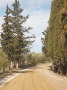 vertine manutenzione strade bianche (13)