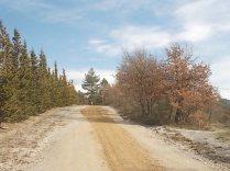 vertine manutenzione strade bianche (15)