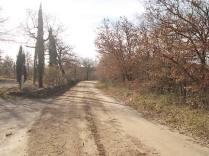 vertine manutenzione strade bianche (18)