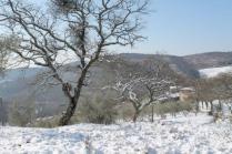 vertine neve 26 febbraio 2018 (43)