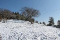 vertine neve 26 febbraio 2018 (54)