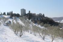 vertine neve 26 febbraio 2018 (65)