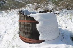 vertine neve 26 febbraio 2018 (81)