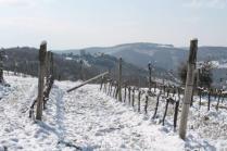 vertine neve 26 febbraio 2018 (89)