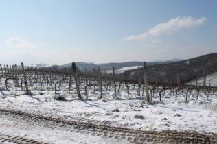 vertine neve 26 febbraio 2018 (91)