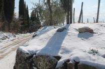 vertine neve 26 febbraio 2018 (93)
