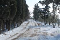 vertine neve 26 febbraio 2018 (95)