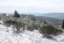 vertine neve 26 febbraio 2018 (97)