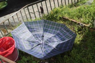 salerno la città degli ombrelli (40)