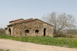 olena di barberino val d'elsa (11)
