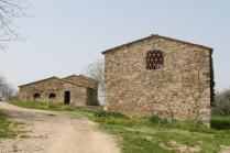 olena di barberino val d'elsa (3)