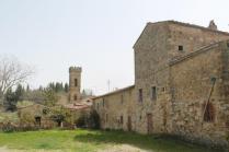 olena di barberino val d'elsa (6)