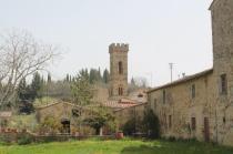 olena di barberino val d'elsa (7)