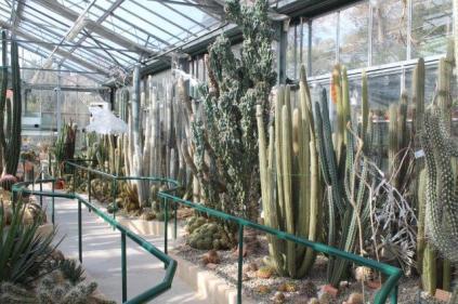 piante grasse giardino sottovico, alessandro e le opere di eugenio romano (22)
