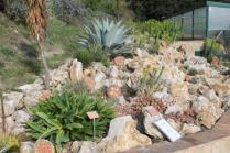 piante grasse giardino sottovico, alessandro e le opere di eugenio romano (34)