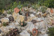 piante grasse giardino sottovico, alessandro e le opere di eugenio romano (38)