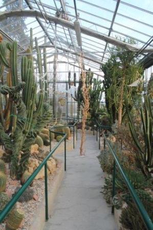 piante grasse giardino sottovico, alessandro e le opere di eugenio romano (82)