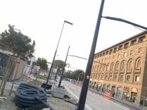 pini tramvia firenze (5)