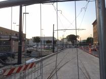 pini tramvia firenze (7)