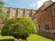 abbazia di san galgano (2)