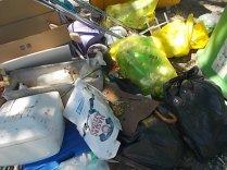 guistrigona-rifiuti-sulla-strada-4