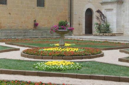 pienza e i fiori (3)