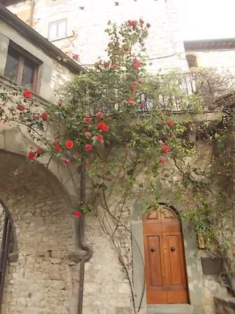 vertine arco delle rose (3)
