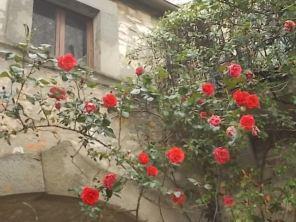 vertine arco delle rose (8)