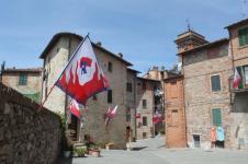 berardenga rione castello comunione e lentiggini (20)