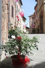 berardenga rione castello comunione e lentiggini (22)