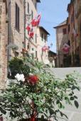 berardenga rione castello comunione e lentiggini (24)