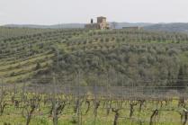 castello paneretta e monsanto (10)