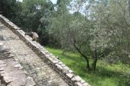 rocca d'orcia (19)
